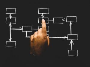 Organizational Structures of Large & Small Businesses