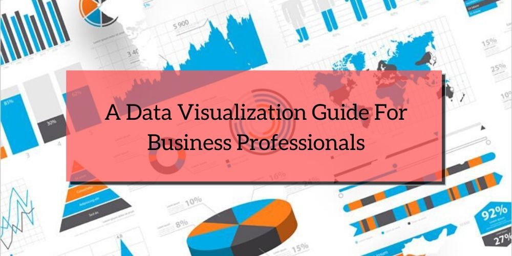 A Data Visualization Guide For Business Professionals