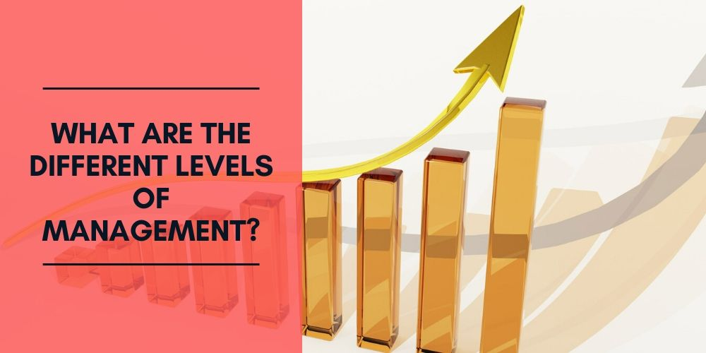 What Are the Different Levels of Management?